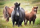 Edition Seidel Pferde Premium Kalender 2022 DIN A3 Wandkalender Pferdekalender Tiere