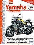 Yamaha MT 07: ab Modelljahr 2014 (Reparaturanleitungen)