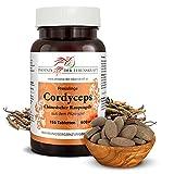 Cordyceps Tabletten 600 mg, Chinesischer Raupenpilz Tabletten, Premium Qualität, Hergestellt in Österreich, Tabletten statt Kapseln, Vegan