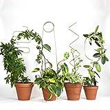Botanopia Rankhilfe - 4 Rankhilfen für Kletterpflanzen, Zimmerpflanzen & mehr - 4 Verschiedene Designs - Dekorative Spaliere für Pflanzen - Aus Recycling-Aluminium hergestellt - Für Pflanzk