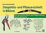 Ziergehölz- und Pflanzenschnitt in Bildern: Eine praktische Pflanz- und Pflegeanleitung durchs ganze Jahr