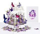 LIMAH® Pop-Up 3D Grußkarte/Muttertag-Karte, Geburtstag-Karte, Dankeskarte Geschenkkarte, Kunst-Karte, Vogel-Karte/Voliere mit Kolibri Motiv/in Weiß Lila/Groß