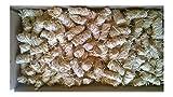 Amafino 5 kg Bio-Anzünder Grillanzünder für Kamin, Holz, Ofen BBQ und Grill; Holzwolle und W
