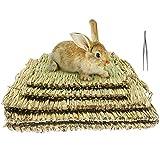 5 Stück Kaninchenmatten, Grasmatten Kaninchen Kauspielzeug Matte Handgeflochtene Gras-Teppiche mit Pinzette Essbare Kaninchen-Bett für Kaninchen Meerschweinchen Chinchilla Hamster und Hasen (3L+2S)