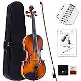 Aileen Geige 4/4 Massivholz, Geige Anfänger, Violin Set Erwachsene