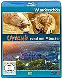 Urlaub rund um Münster - Wunderschön! [Blu-ray]