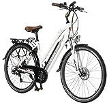 AsVIVA E-Bike 28' Trekkingrad, CityBike Tiefeinsteiger (14,5Ah Samsung Akku), 7 Gang Shimano Schaltung, starker 250W Heckmotor, weiß grau