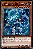 Cardicuno - Ninja des weißen Drachen - SHVA-DE024 - Super Rare - Yu-Gi-Oh! - Deutsch - 1. Auflage - Mit Toploader