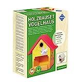 Pebaro Siva _466 466 Holzbauset Vogelhaus mit 9 unbehandelten Birkenholzplatten, Hammer und Nägeln, perfekte Geschenkidee für HobbyHandwerker