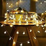 6 Meter 40LED Lichter,Weihnachtsfeier Dekoration Lichter,Weihnachtsbeleuchtung, Fensterlicht Saugnapf ,Fensterlichter,lichtervorhang fenster ,Lichterkette,Lichtervorhang Lichter Weihnachtsbeleuchtung