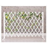 WXQIANG Gartenzaun Bildschirm Leitschiene Dekoration Pflanze Klettergerüst Garten Barrier feuchtigkeitsfest, 3 Größen, Typ 2 (Color : White, Size : 75X160CM)