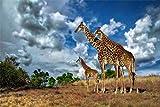 HMTTKPRO Diamant Stickerei Home Hochzeit Dekoration Himmel Wolken Afrika Giraffe Savanne Kristall Strass Für Home Wanddekoration Full Drill 30X40