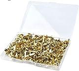 WOWOSS 500 Stück Papierverschlüsse, Splinte, runde Messingverschlüsse, Bastelnadeln, zum Herstellen von Brads Split-Stiften in verschiedenen Größen Scrapbooking-Splinten Basteln mit Aufbewahrungsbox