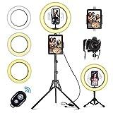 LED Ringlicht mit Stativ Handy, 10' Selfie Ringleuchte mit Fernbedienung und Doppel Handyhalter mit 3 Farbe&10 Helligkeitsstufen für YouTube TikTok Fotografie Live-Streaming [Tischstativ inklusive]