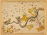 Feeling at Home Kunstdruck-auf-Papier-cm_42_X_56-Aspin-Jehoshaphat-Tiere-Bild-Poster-Tiere-Vögel-Antike-Astronomie-und-Weltraumkarten-Mythologie-Himmelskarten-Konstellationen