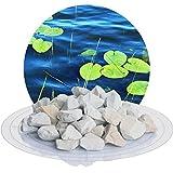 Schicker Mineral 5 kg Zeolith-Aqua Wasseraufbereiter, Filtermedium zur Nutzung im Gartenteich, Schwimmteich, Aquarium und Sandfitleranlage (16,0-32,0 mm)