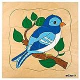 Educo | Wachstumspuzzle - Vogel | Lehrmaterialien Erdkunde | Puzzle - Spielen und lösen - Schichtenpuzzles | Ab 84 Monate | Bis 144 Monate, blau