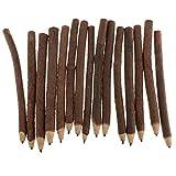 kowaku 15 Stück Hochwertiger Holzstiftzweig Und Zweiggraphit Bleistifthandwerk
