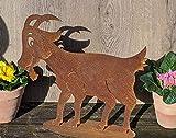 terracotta-toepfe-de Ziege ca. 40 cm breit aus Metall Edelrost Rost Deko Tier Garten Ziegenbock Geißbock