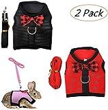 Willlly Kaninchengeschirr und Leine, Set mit niedlicher schicker Fliege und verstellbarer Netzweste, Geschirr für Katzen, für kleine Tiere, Schwarz + Pink, S (Farbe: Schwarz + Rot, Einheitsgröße: M)