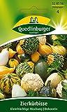 Quedlinburger Zierkürbis 'Kleinfruchtiger Mix', 1 Tüte Samen