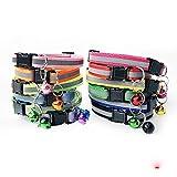 Egurs Welpenhalsband 12 Stück/Set Reflektierend Katzenhalsband mit Glöckche Hundehalsbänder für Katzen kleine H