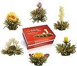 """Creano Teeblumen Mix – """"ErblühTee"""" in edler Geschenkbox zum Probieren   Weißtee (6 verschiedene Sorten Teerosen) Geschenk für Frauen, Mutter, Teeliebhaber"""