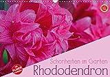 Rhododendron Schönheiten im Garten (Wandkalender 2021 DIN A3 quer)