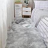 LEERIAN Area Teppich, Soft Area Teppichboden, Schlafzimmer rutschfeste Yoga-Decke, Flauschiger Teppich, hellgrau 70x 160