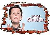 Wandsticker 3D Effekt Young Sheldon Tv Series Aufkleber Wand Deko Wandbild Fenster Mauer Wandaufkleber Sticker Kinderzimmer Wanddeko 20x27inch(50x70cm)