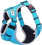 HAPPY HACHI Hundegeschirr Atmungsaktiv Brustgeschirr für Kleine Mittlere Große Hunde, Einstellbar Reflektierendes Weich Laufgeschirre Sicher Gepolstert Anti Zug Weste Geschirr (M,Blau)