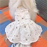 BeingHD Frische Baumwolle Dünnen Rock Haustier Hund Kleidung Frühling Und Sommer XS Plus (Brust 33 zurück 22 s ca. 3-4 kg) Frisch und weiß