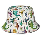 AOOEDM Dinosaurier Farbe Zoo Wasser Gras Unisex Druck Eimer Hut Muster Fischer Hüte Sommer Wende Packbare Kappe Frauen Männer Mädchen Junge