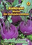 Kohlrabi, Blusta blau, früh N.L.Chrestensen Samen 418292-B