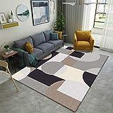 SunYe Moderne Und Einfache Dicke Doppelschicht Wohnzimmer Teppich Büro Fußmatten rutschfeste Haltbare Fußmatten, Maschinenwaschbare Haustier Teppiche, Schlafzimmer N