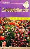 Zwiebelpflanzen: Pflegeleicht und winterhart