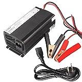 kraftmax LiFePO4 12V Smart Ladegerät mit 20A Ladestrom - ideal für 100ah Lifepo 4 - Akku Schnellladegerät der Neusten Generation