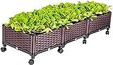 Pflanzgefäß Hochbeete Gartenbett Quadratische Garten Pflanztöpfe Kit mit Rädern Kunststoff Hochbeet Box für Pflanzen Blumen Gemüsebäume Setzlinge Gartenbeet(Größe:160x40x36cm)