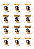 12 Muffinaufleger ca. 6 cm zum selbst ausscheiden, Cupcakes Muffinsbild Geburtstag Motiv: Yakari , Fondant 0524x
