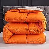 CHOU DAN Ganzjahres Steppbett 135x200cm,Daunendecke Winterdecke verdickte doppelte Bettdecke-220 x 240 cm, 3000 g_Orange