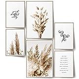 BLCKART Infinity Premium Beige Love XL Poster Set Bilder Stilvolle Doppelseitige Pampas Gras Wohnzimmer Deko Trockene Pflanzen (Beige Love   6er, XL   2X A2   4X A3   Ohne Rahmen)