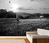 Vlies Tapete Poster XXL Fototapete Natur Feld Weg Dorflandschaft Farbe schwarz weiß, Größe 300 x 150
