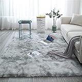 Aujelly Soft Area Rug Schlafzimmer Shaggy Teppich Zottige Teppiche Flauschige Bunte Batik-Teppiche Carpet Neu Hellgrau 150 x 240 cm