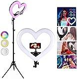 LBXKE Selfie Ringlicht mit Stativ, Dimmbare LED Ringleuchte Blitzgeräte,mit 2 Farbe und 6 Helligkeitsstufen für Make-up,Live-Streaming,YouTube, Tiktok, Vlog und Fotografie