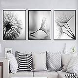 LLXXD Abstrakte Wandplakat Natur Löwenzahn Blume Leinwand Gemälde Moderne Schwarz Weiß Kunstdruck Bild Wohnkultur Wohnzimmer-40x60cmx3 (kein Rahmen)