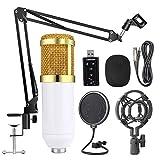 Adaskala Professionelle Suspension Mikrofon Kit Studio Live Stream Broadcasting Aufnahme Kondensatormikrofon Set