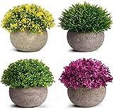 Künstliche Pflanzen, TRUBUY 4 Stücke Gefälschte Verschiedene Realistische Pflanzen Klein Faux Gras Bonsai mit Topf für Hause Büros Badezimmer Tisch Deko (Stil 3)