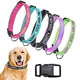 Brillianne Personalisiertes benutzerdefiniertes Nylon-Hundehalsband, gestickter ID-Name Reflective Outdoor-Hundehalsband mit 3 einstellbaren Größen: Klein, Mittel, Groß