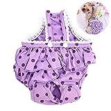KAIKUN Läufigkeitshose Für Hündinnen Hundewindeln Für Hündinnen Hund Windeln weiblich Hundewindeln Weibliches Medium Einstellbare Hundewindeln Katzenwindeln Purple,33