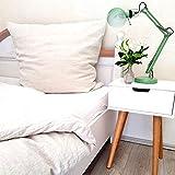 leinenlieb: Leinen-Bettwäsche aus 100% Leinen (Bettwäsche-Set: Decke 135 x 200 cm und Kissen 80 x 80 cm), Stonewashed Leinenbettwäsche Natur beige, Bettbezug aus hochwertigem reinem Leinen